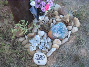 Tashi's Garden