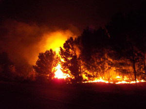 Franschhoek fires 2013